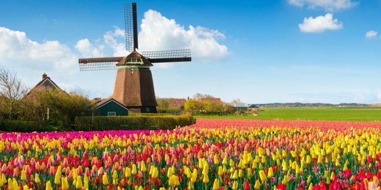 Hollanda Hakkında Genel ve İlginç Bilgiler!