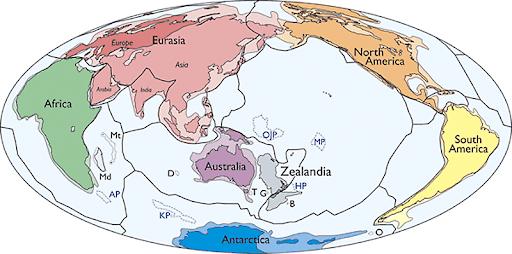 Dünyanın 8. kıtası Zelandiya!